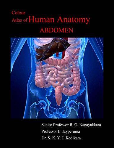 Colour Atlas of Human Anatomy Abdomen PDF