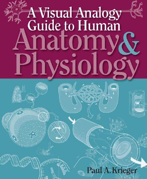 A Visual Analogy Guide to Human Anatomy & Physiology PDF