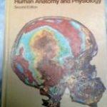 Human Anatomy and Physiology 2nd Edition PDF