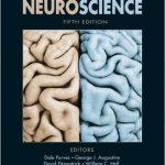 Neuroscience 5th Edition